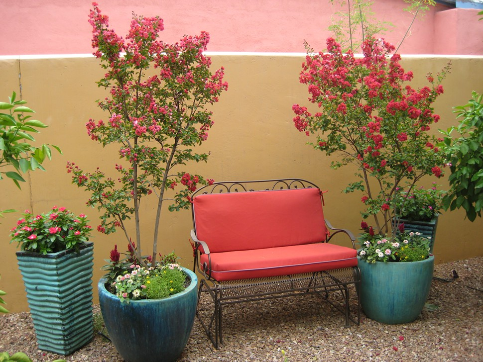 Five minutes of gardening makes a big difference for Potted garden designs